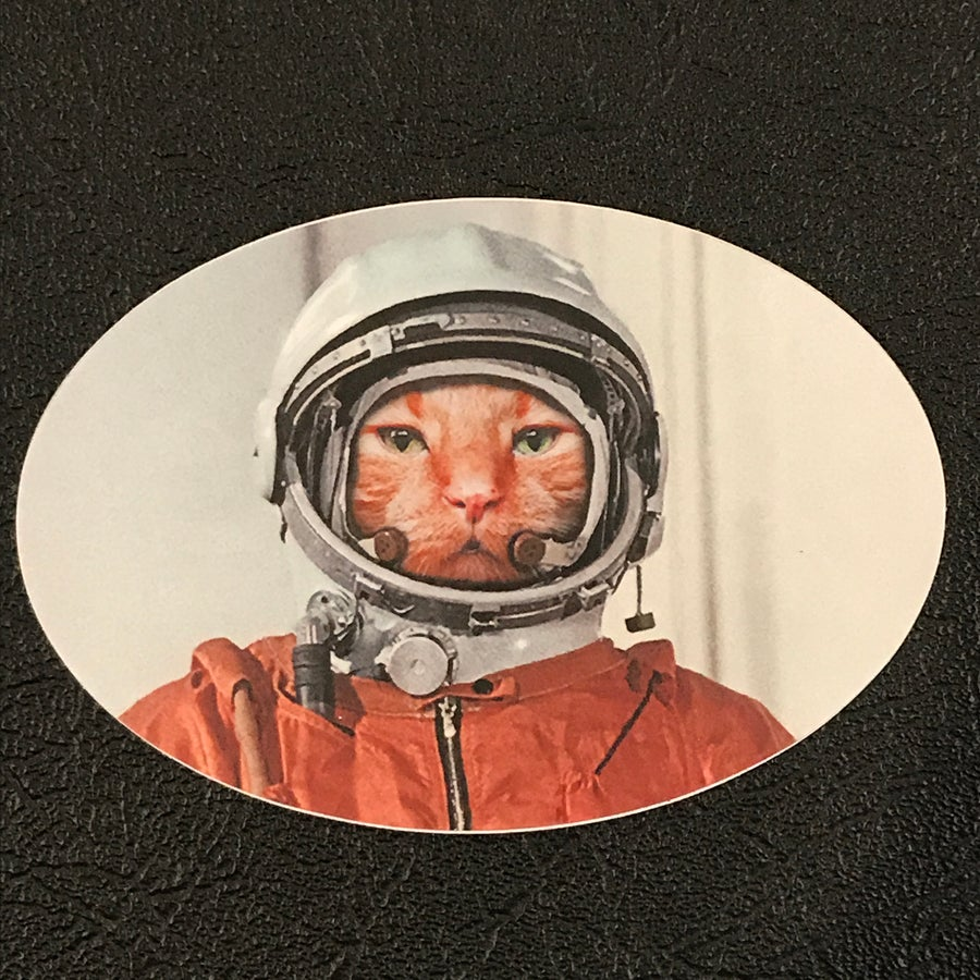 Image of Catstronaut Sticker