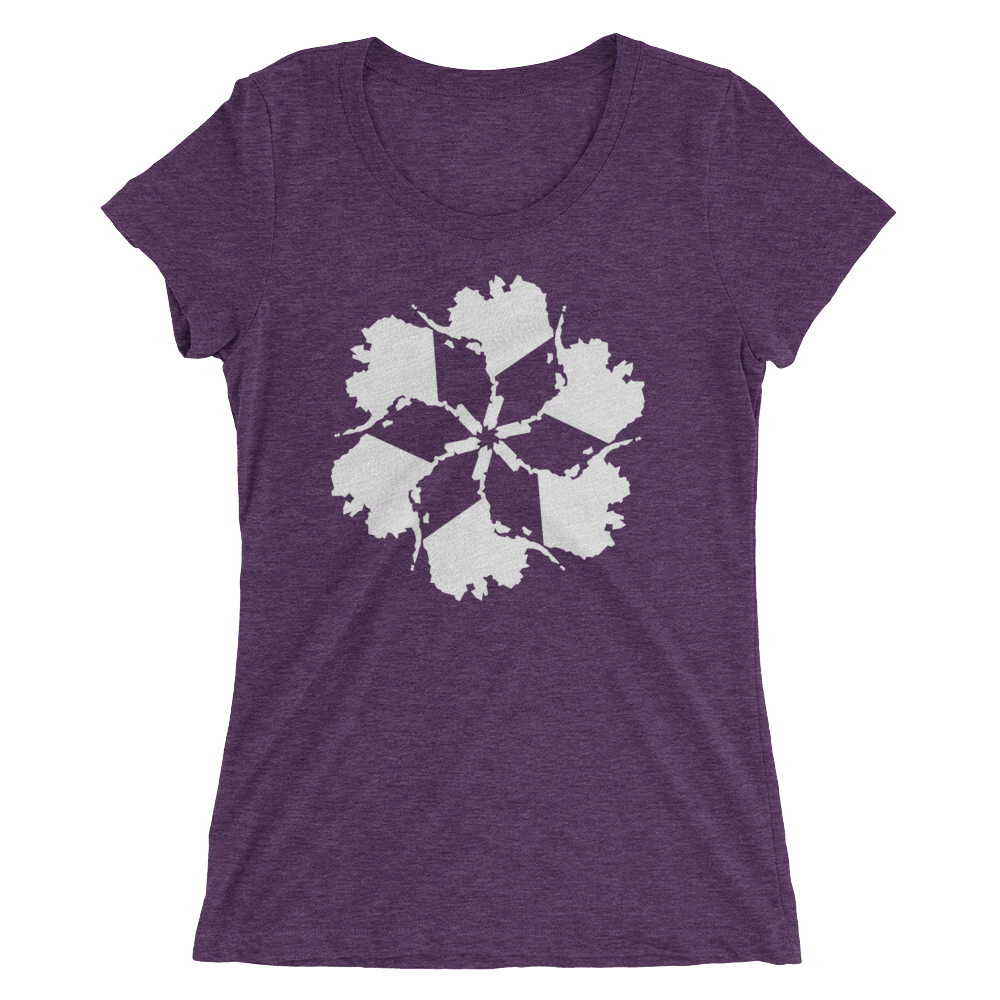 Image of Women's Alaska Spiral Tee - Purple