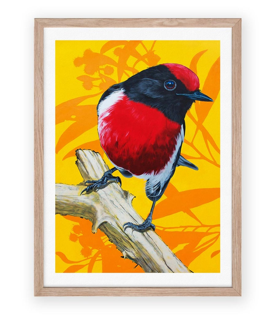 Image of Red Robin Print