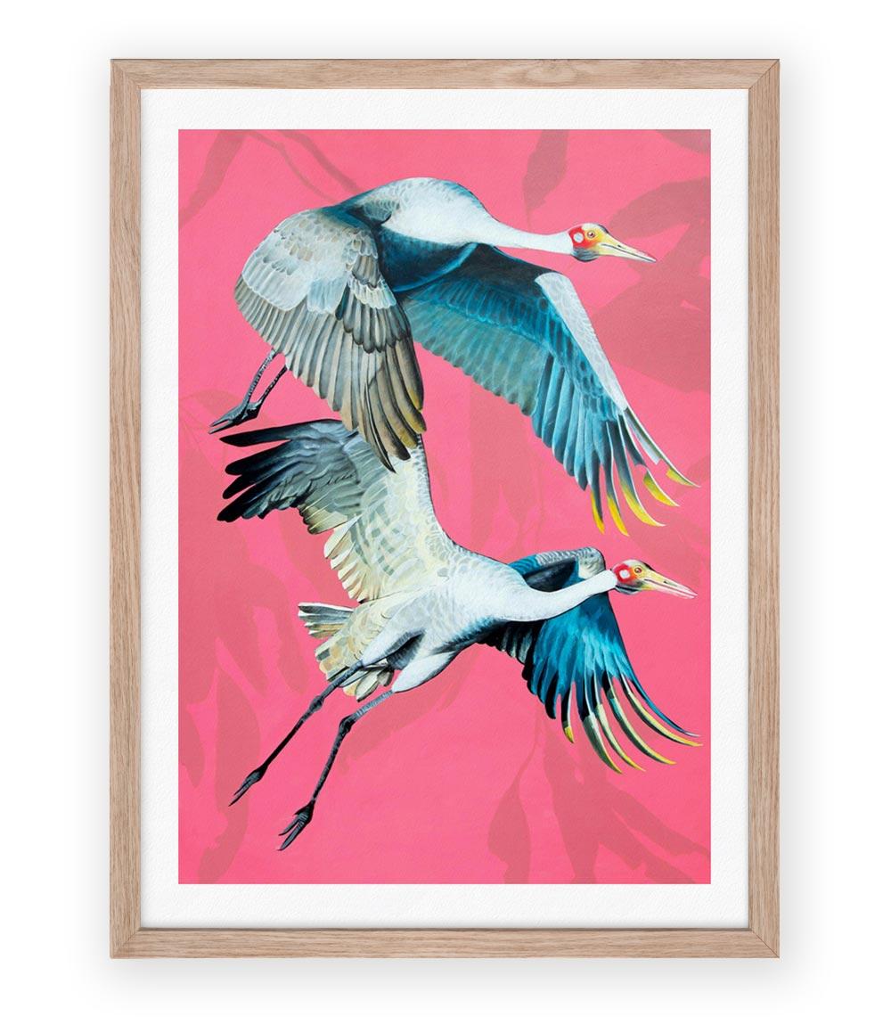 Image of Brolgas Print
