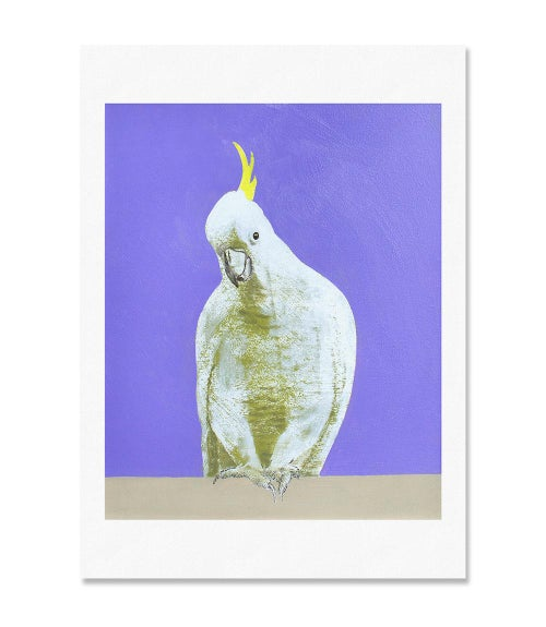 Image of Lilac Cockatoo Print