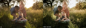 Image of ACR Presets - Paisley Ann Photography - [ Foliage Collection ]