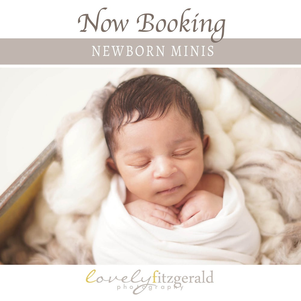 Image of Wrapped Mini Newborn Portrait