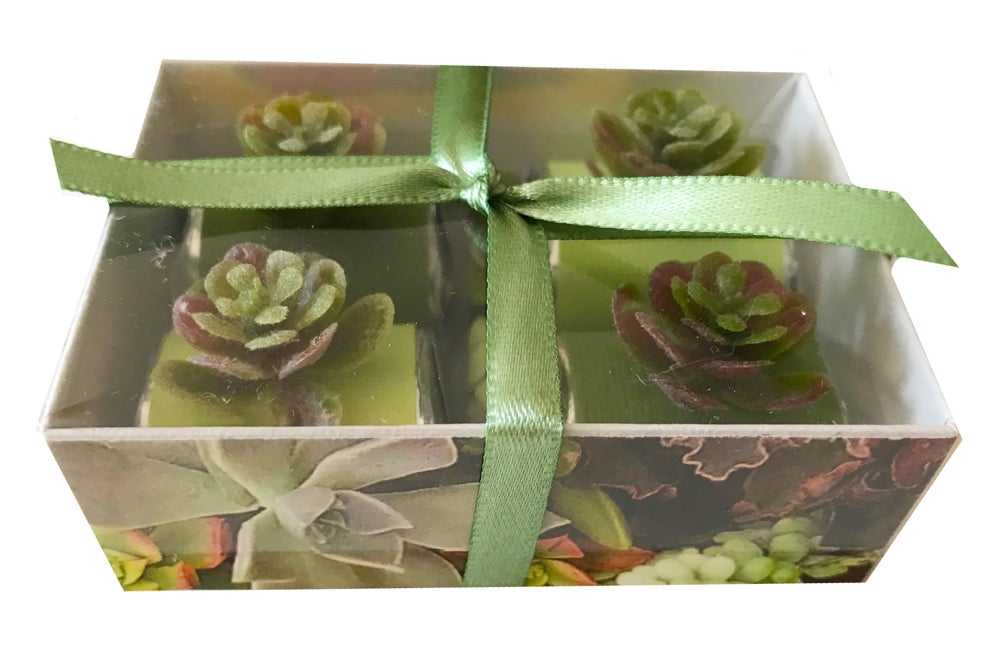 Image of Succulent Petite Jewel Box Chocolate Nuggets