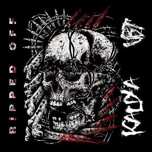 Image of Kaliya / VBT Split Cassette