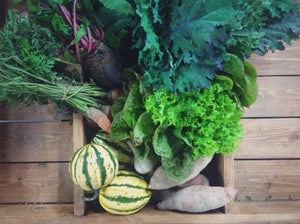 Image of Fall / Winter CSA share.