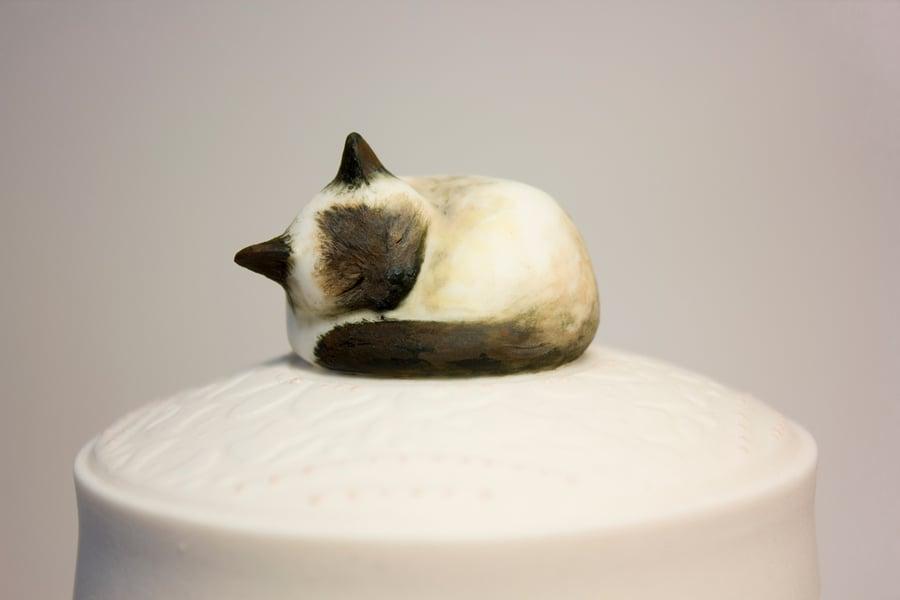 Image of Siamese Cat Custom Urn, Seal Point, Blue Point, Lynx Point, Ragdoll, Snowshoe