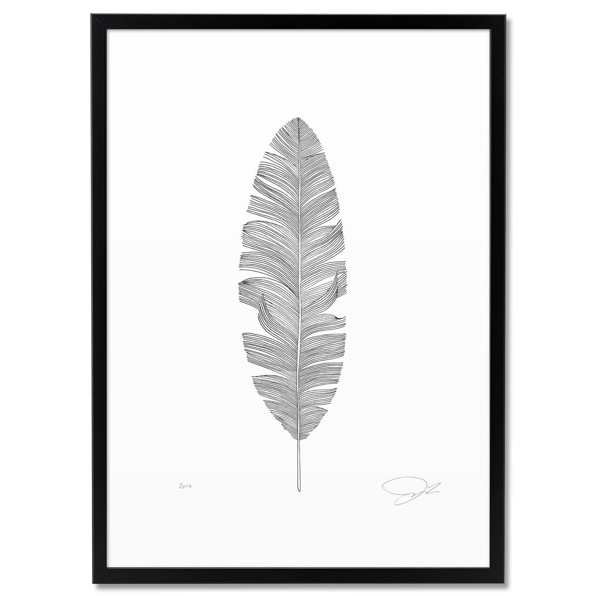 Image of Print: Feather