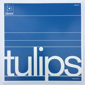 "Image of Maston - ""Tulips"" 12"" Vinyl LP"