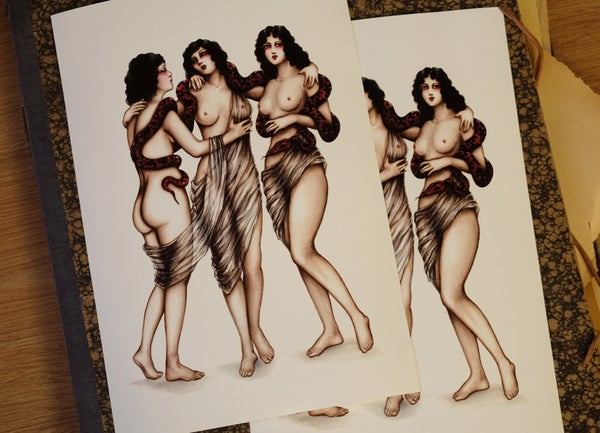 Image of The three graces