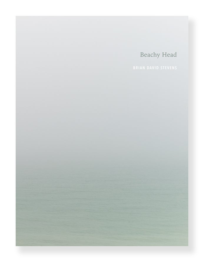 Brian David Stevens - Beachy Head