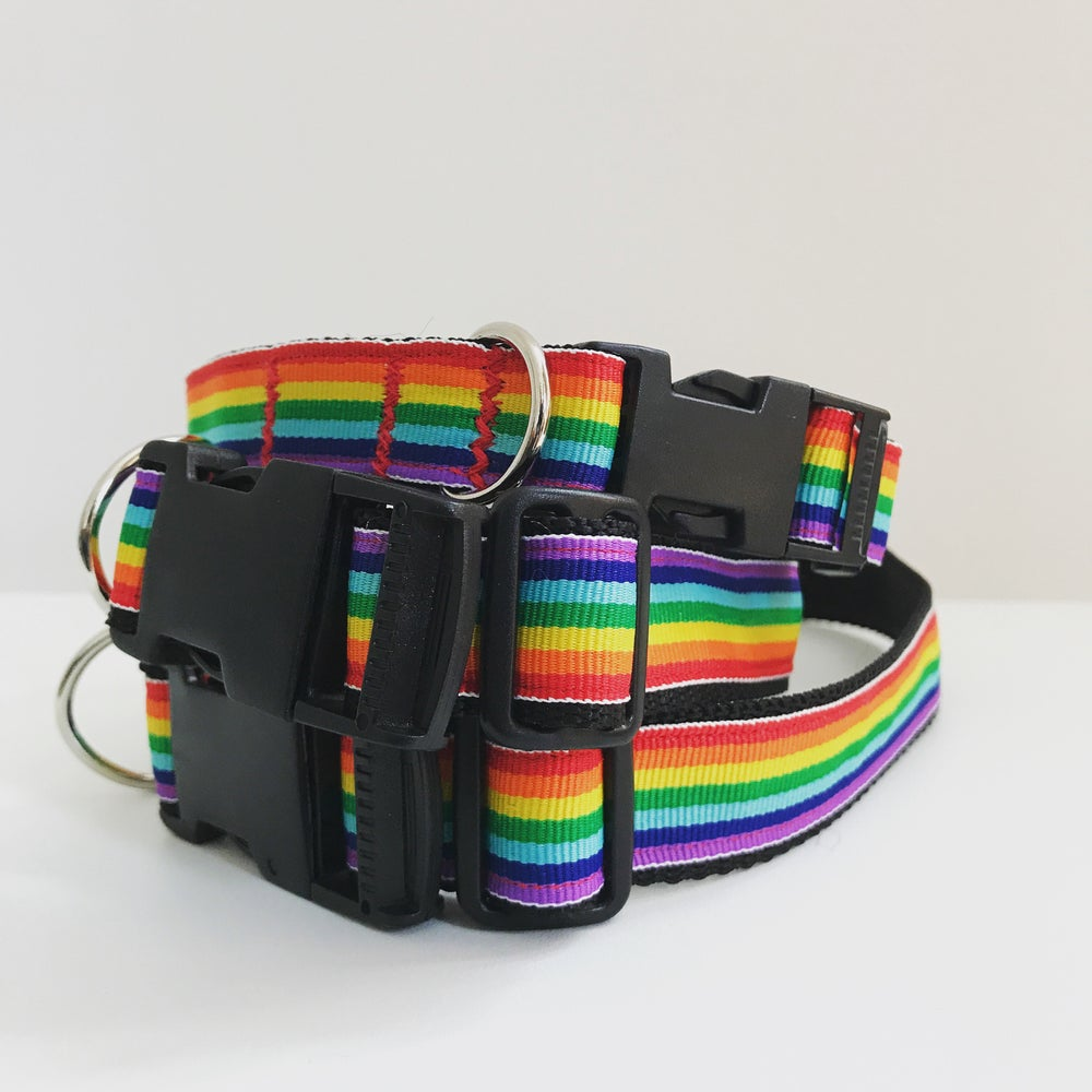 Image of Rainbow Pride Dog Collar