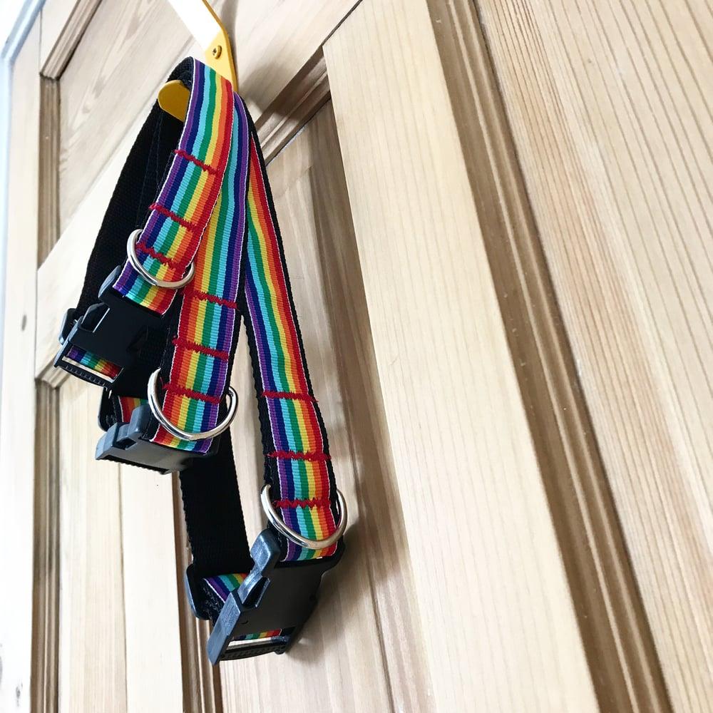 Image of Rainbow Pride Dog Collar