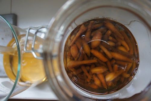 Image of FINGER ROOT spagyric tincture - alchemically enhanced plant extraction