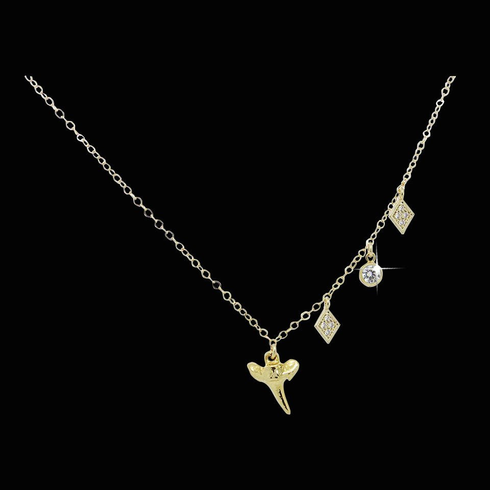 Image of Shark Tooth & Topaz Necklace