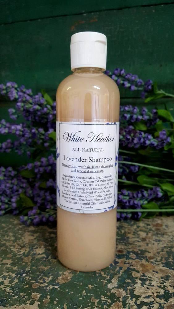 Image of Lavender Shampoo
