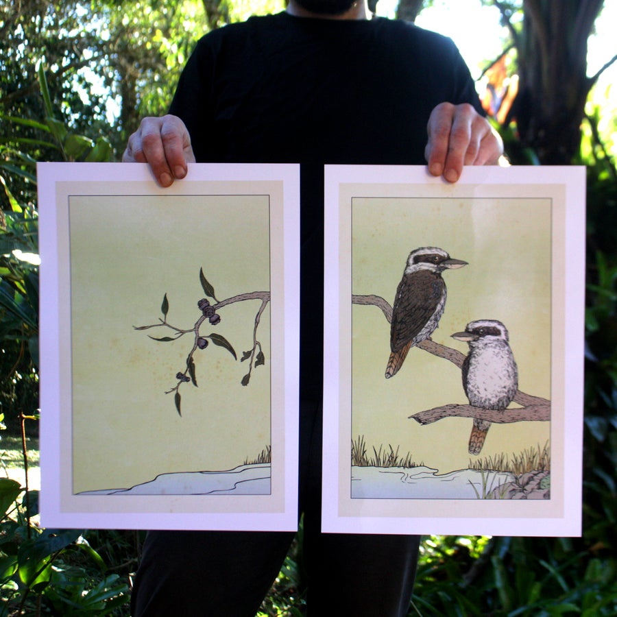 Image of Laughing Kookaburras