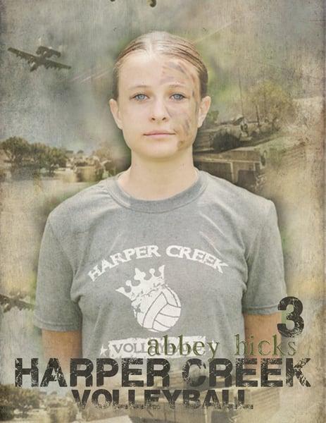 Image of Individual VB Posters