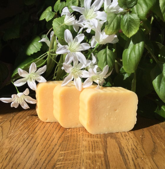 Image of Amber/White Ginger Soap