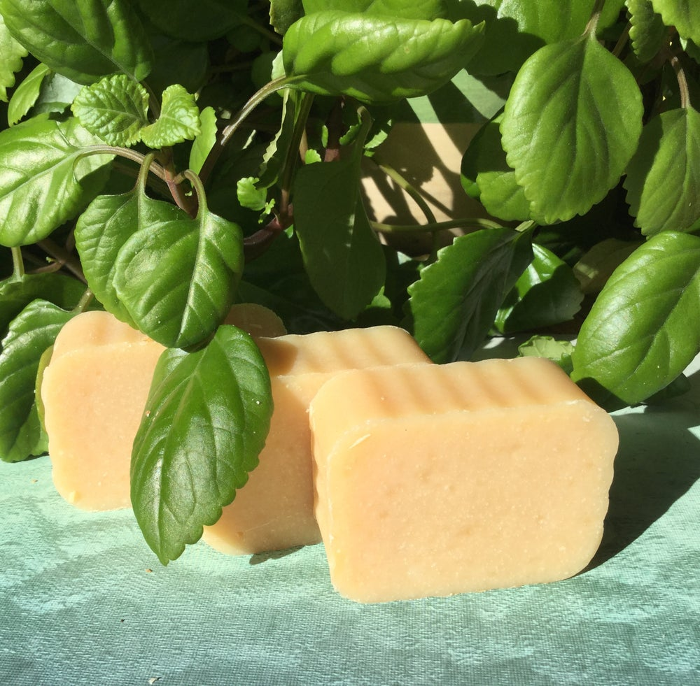 Image of Cold Water Soap