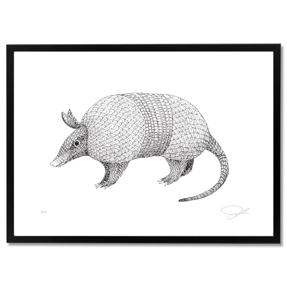 Image of Print: Armadillo