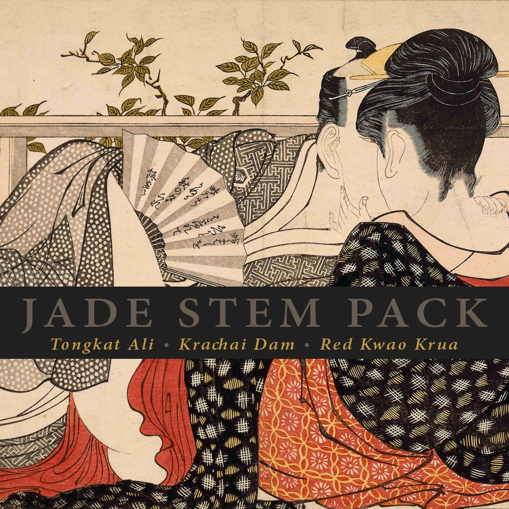 Image of JADE STEM Pack: Tongkat Ali, Krachai Dam and Red Kwao Krua