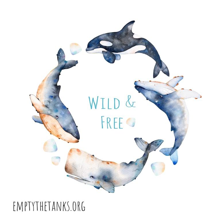 Image of Wild & Free Empty the Tanks Sticker