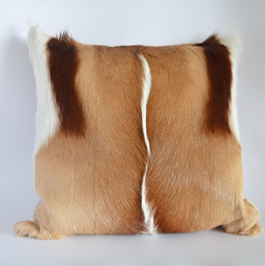 Image of Springbok Cushion