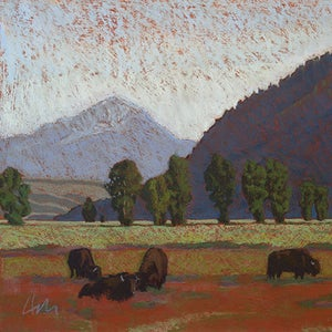 Image of Bison and Butte