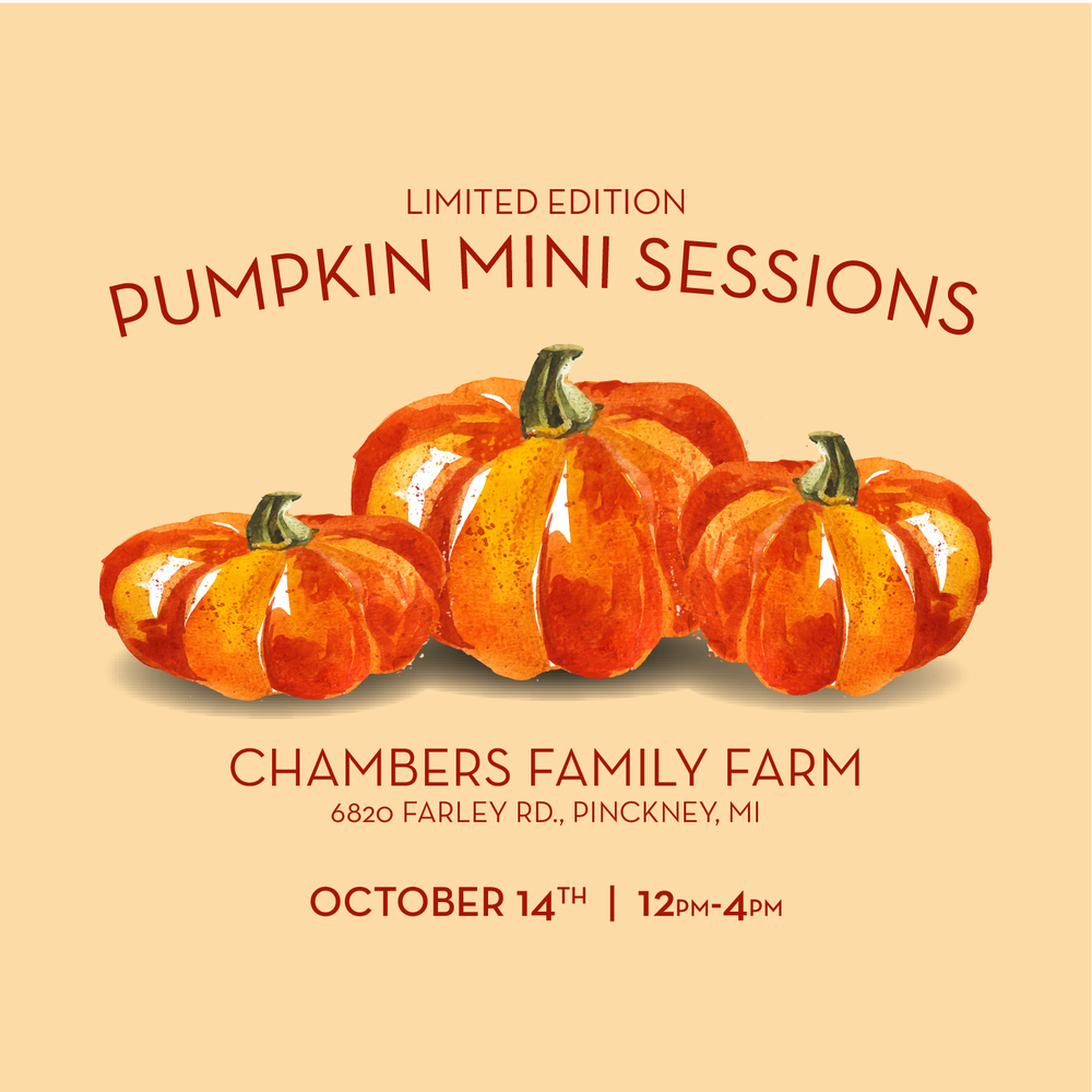 Image of Pumpkin Patch Mini Sessions