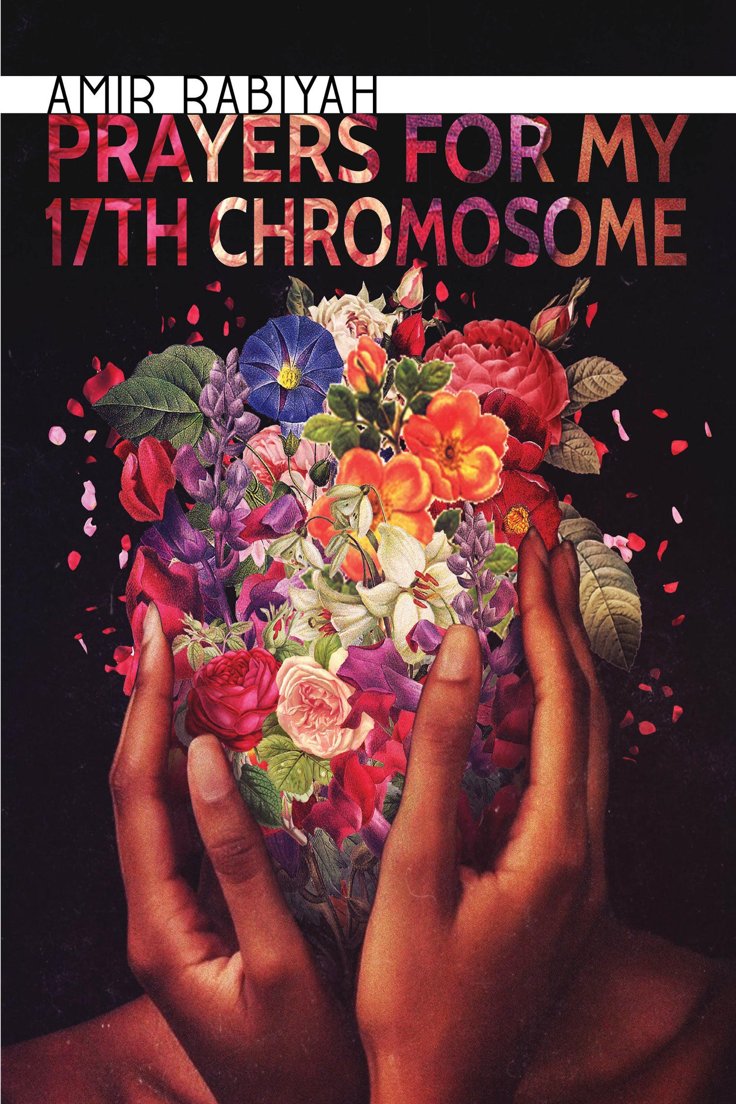 Image of Prayers for My 17th Chromosome by Amir Rabiyah (Publishing Triangle Finalist)