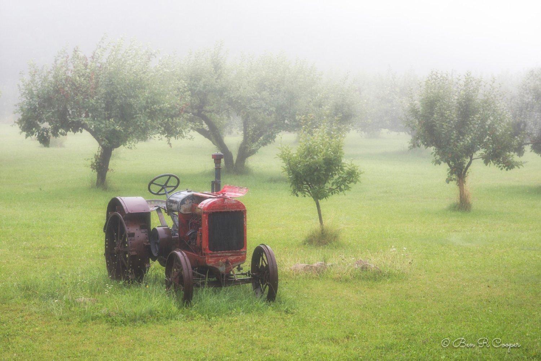 Misty Morning in Bayfield
