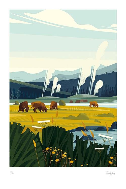 Image of YELLOWSTONE - Herd of buffalo