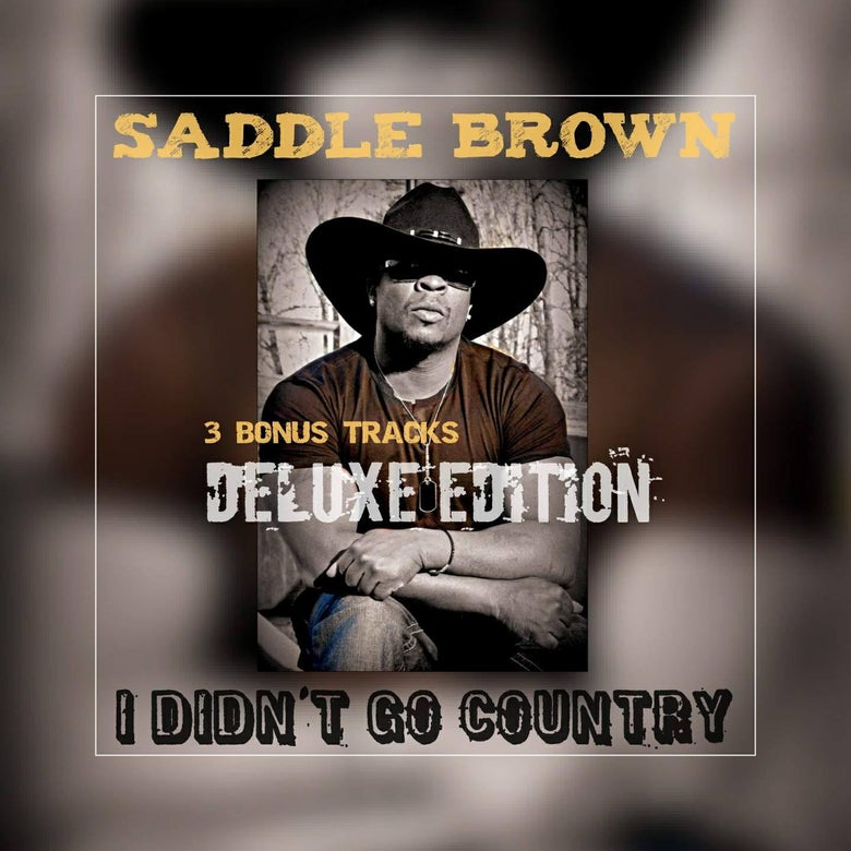 Image of I Didn't Go Country - CD