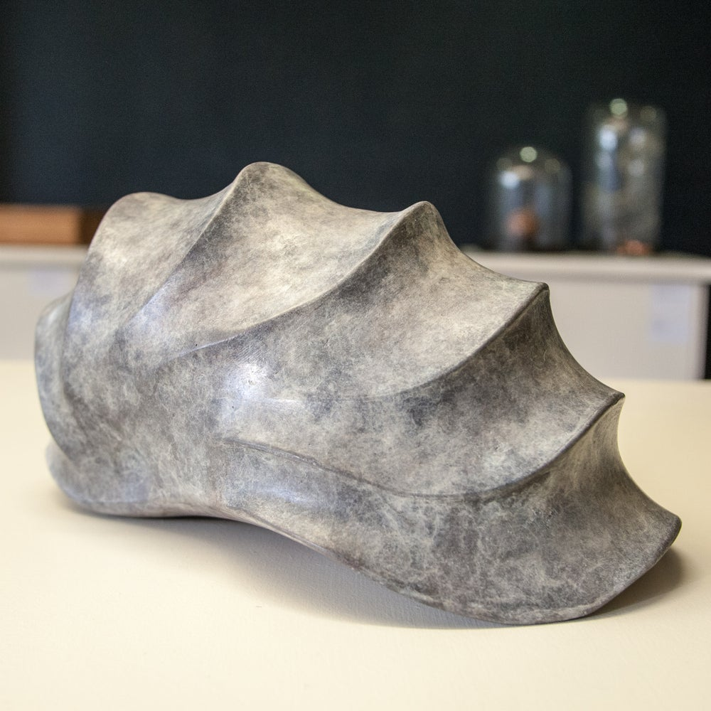 Image of Nautilus
