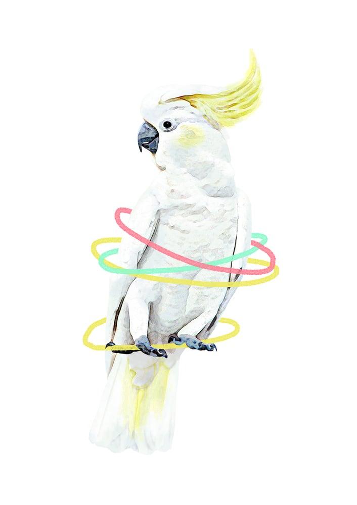 Image of Cockatoo Animal Nursery Print