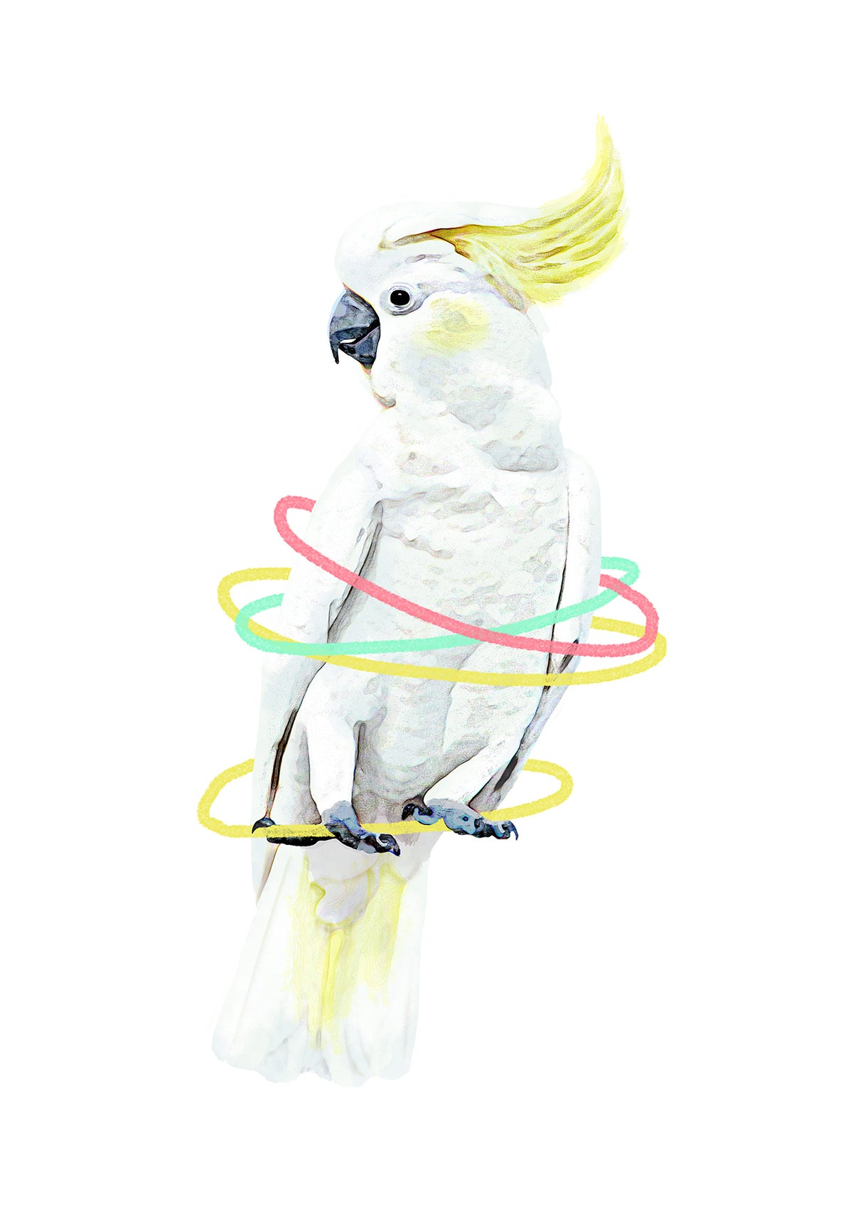 Image of Cockatoo Animal Nursery Print