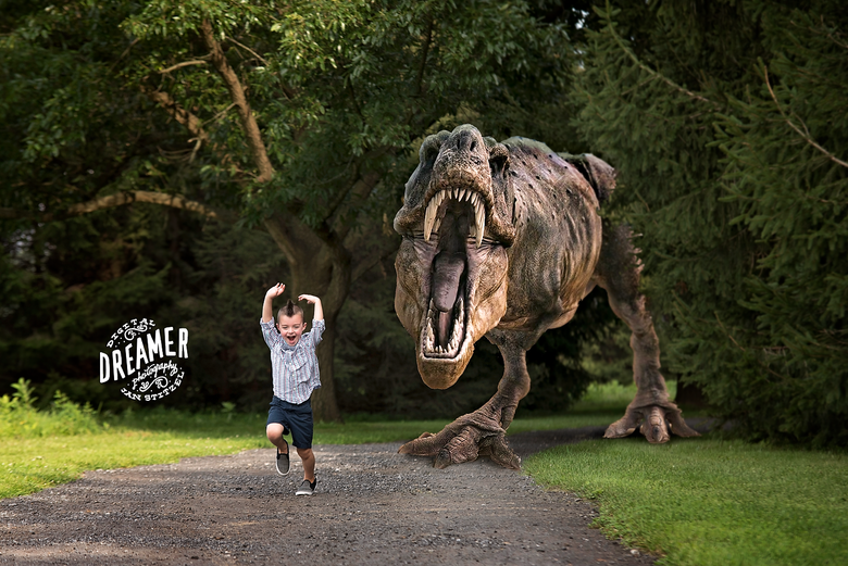 Image of Dinosaur Dreamer Session