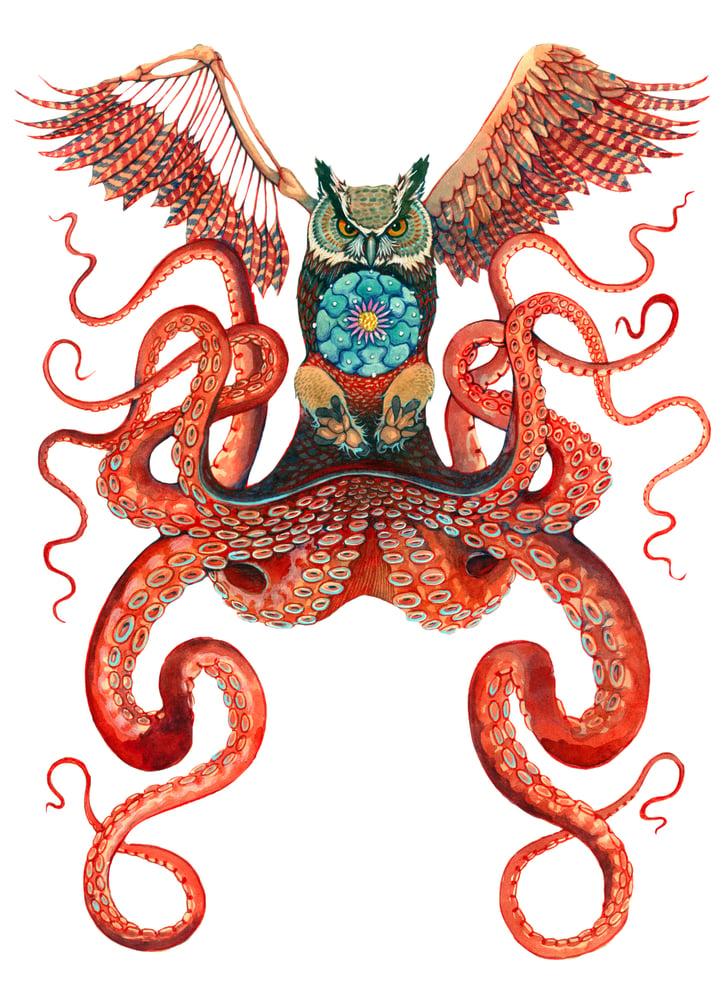 Image of Axis-Mundi