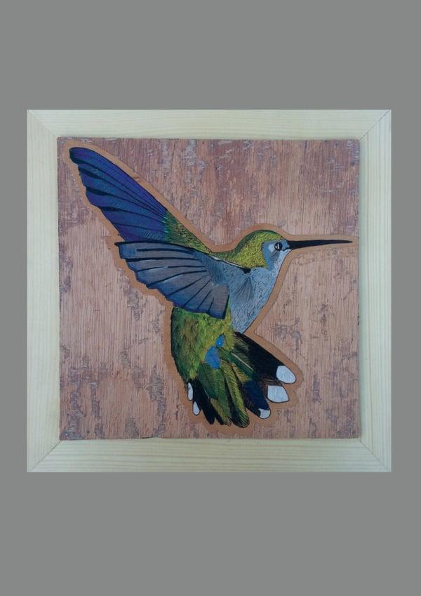 Image of Hummingbird ⌗5