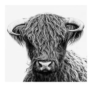 Image of Donella - black & white