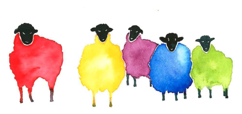 Image of For Flocks Sake