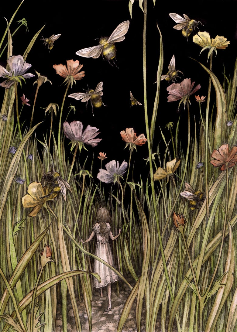 Image of 'Wild Flower' by Adam Oehlers