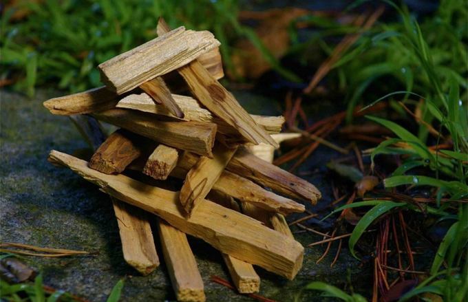 Image of Palo Santo 4.5 inches