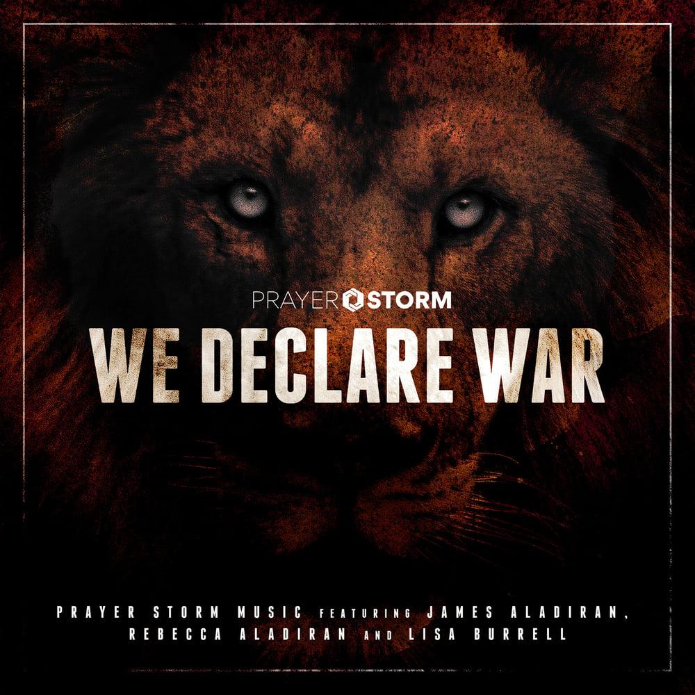 Image of We Declare War (Audio CD Hard Copy)