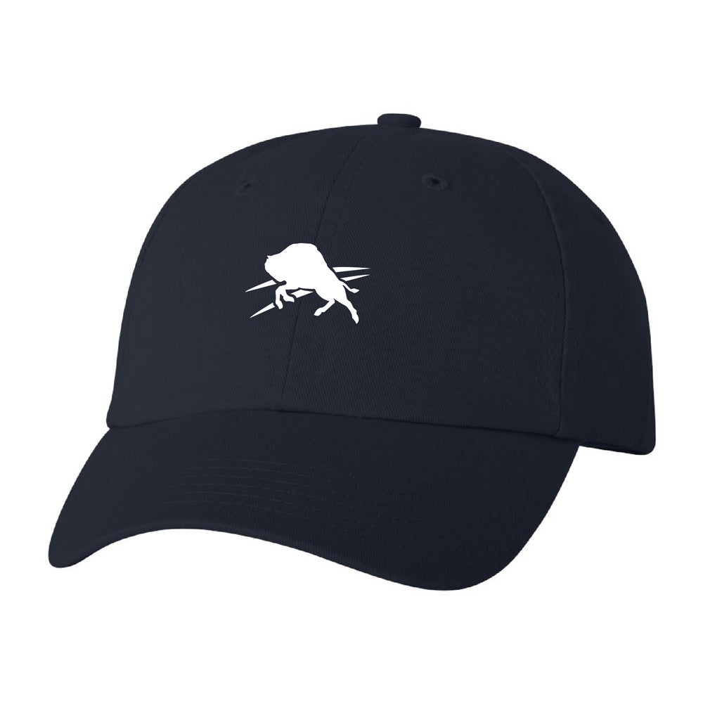 Image of Bison Logo Hat