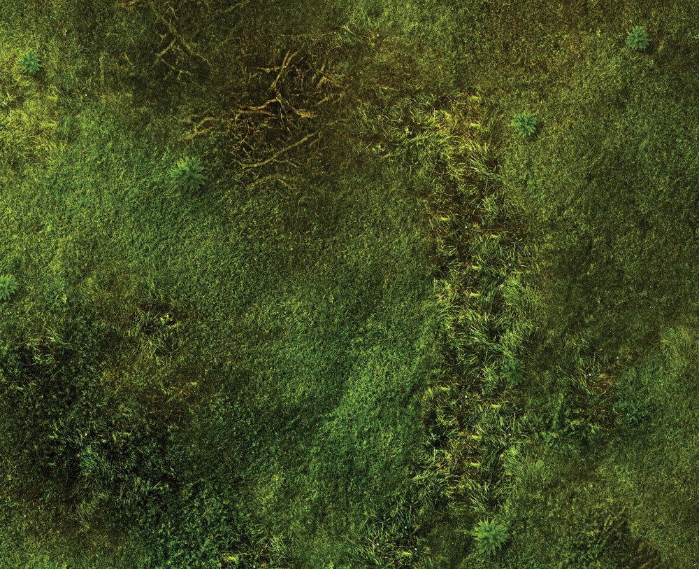 Image of Jungle Floor -- 4'x6' plus -- #520