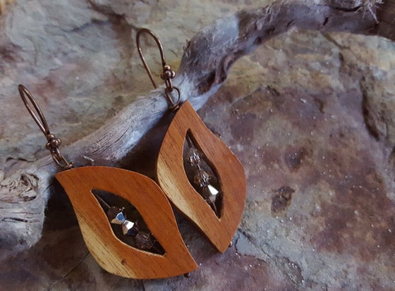 Image of Wood and Crystal earrings