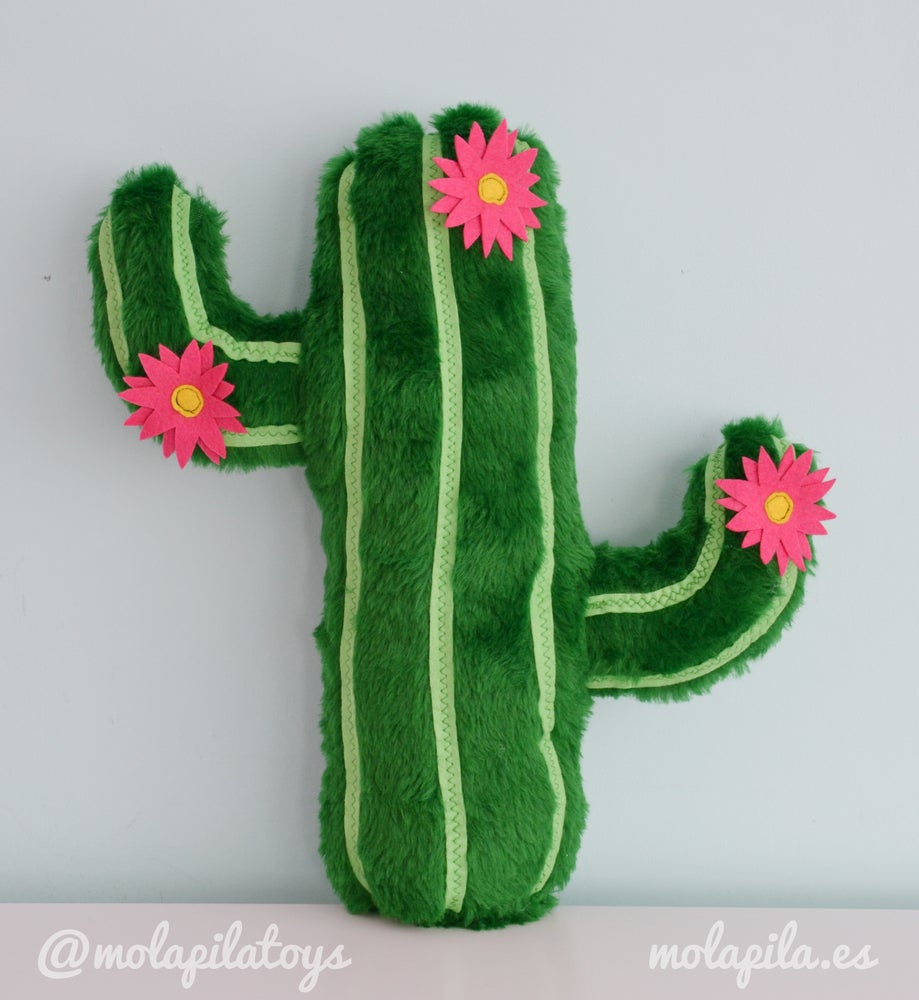 Image of Cactus with flowers