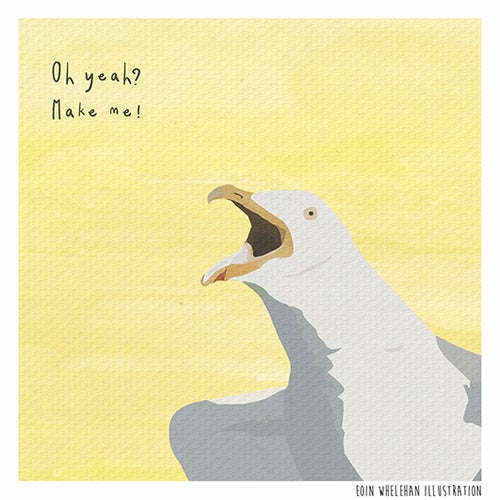 Image of Dolittle - Seagull